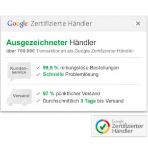 Google_Zert